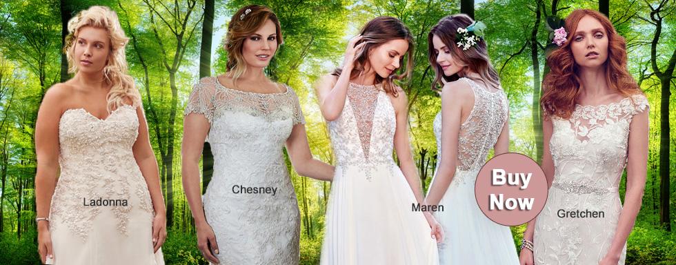 Wedding Gowns Az: Pizazz Wedding Boutique: Bridal Gowns, Tuxedos